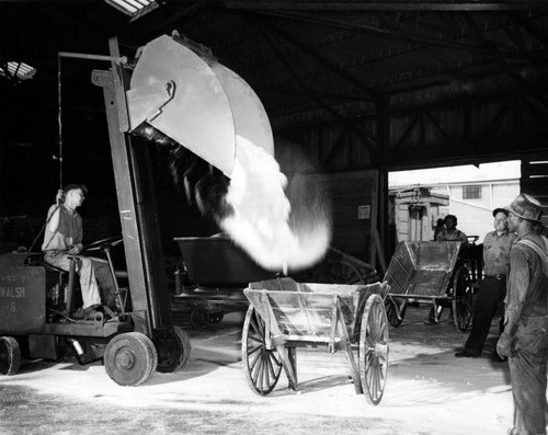 Loading Limestone Powder Into a Pushcart
