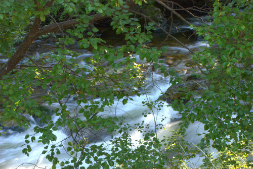 Nature Stock Photo - St. Vrain River