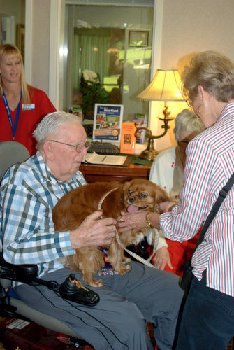 Elderly Man with a Therapy Dog