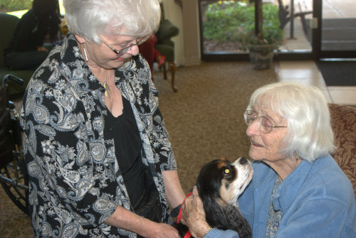 Woman with a Therapy Dog