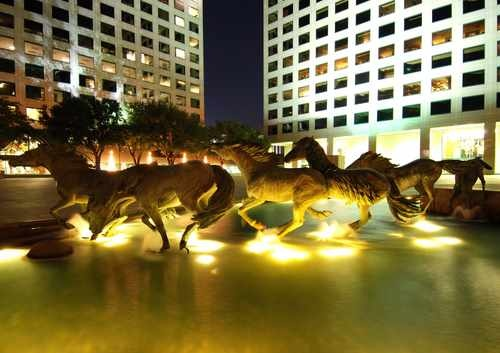 The Las Colinas Horses at Night