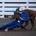 Rodeo cowboy steer wrestling at Cheyenne Frontier Days Rodeo